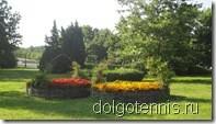 Дивные цветочные клумбы